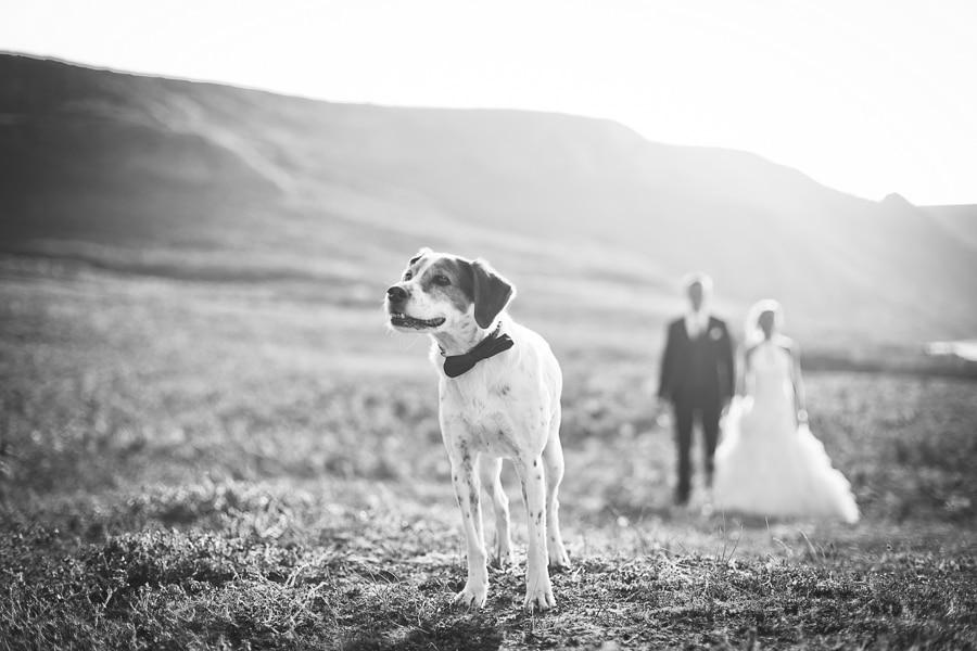 15 photographe mariage erquy rennes nantes vannes - Photographe Mariage Vannes