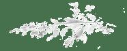 1470921527-Flora-Flowers-2